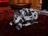 Una nena traviesa y su perro 3D